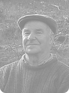 Manuel Luís Mendes