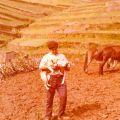 Arménio a lavrar na fazenda, com um cão e um cordeiro no colo